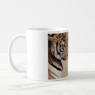 Taza de café - tigres de Tailandia de la imagen 2