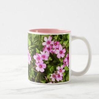 Taza de café - tréboles florecientes
