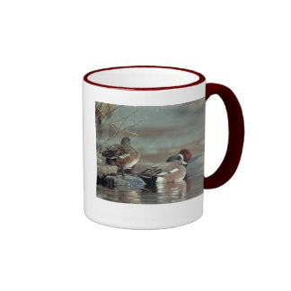 taza de cerámica del wigeon americano del