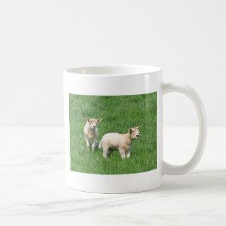 Taza de dos corderos