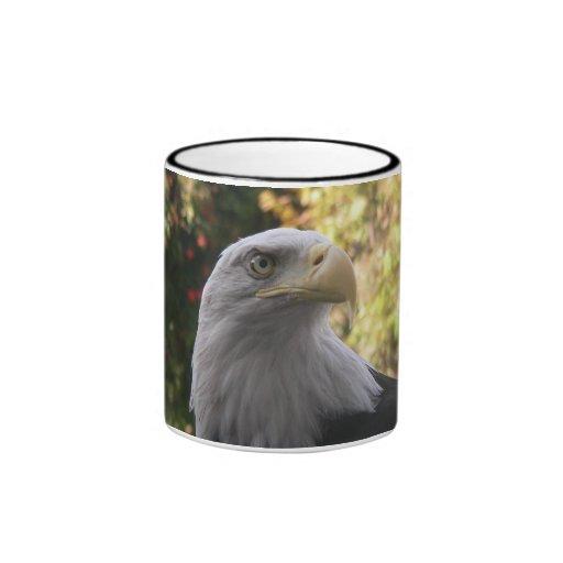 Taza de Eagle calvo de los pájaros 009