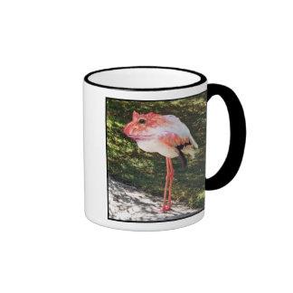 Taza de Flamingtoad