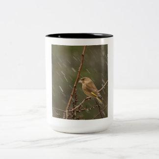 Taza de Greenfinch