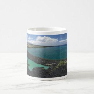 Taza de la bahía de Kiholo