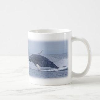 Taza de la ballena jorobada de Monterey California