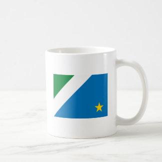 Taza de la bandera de Mato Grosso Dosul
