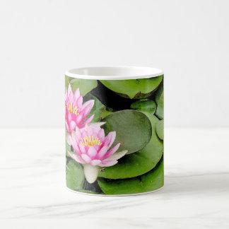 Taza de la charca de Waterlilies