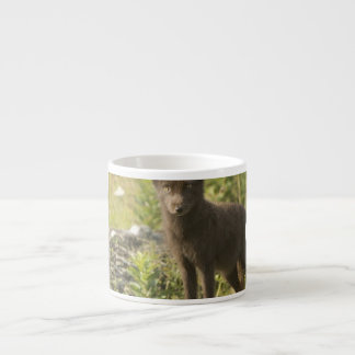 Taza de la especialidad del Fox negro Tazitas Espresso