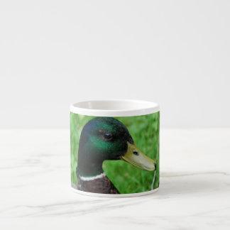 Taza de la especialidad del pato silvestre taza espresso