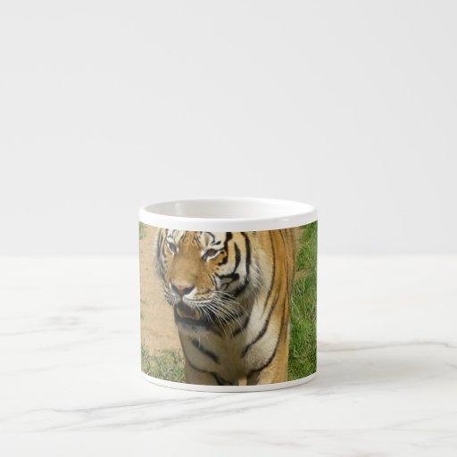 Taza de la especialidad del vagabundeo del tigre tazitas espresso