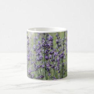 Taza de la flor de la lavanda