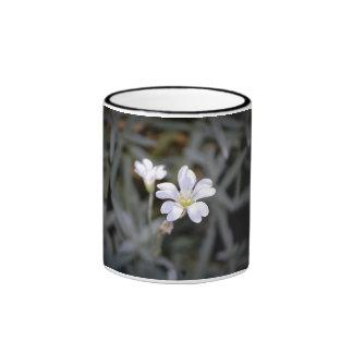 Taza de la flor minúscula y blanca