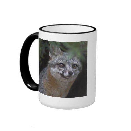 Taza de la fotografía de la fauna del Fox gris