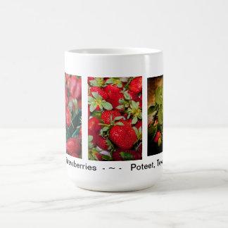 Taza de la fresa de Poteet