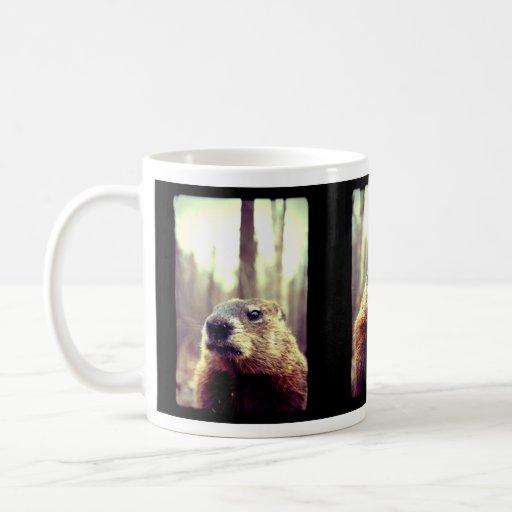 Taza de la historia de la marmota