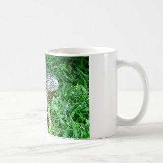 taza de la iguana