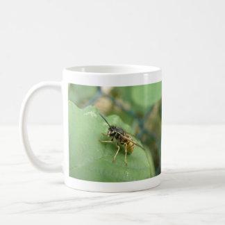 Taza de la macro de Hoverfly