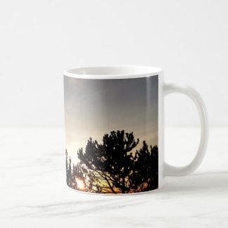 Taza de la puesta del sol y del pino de Whitebark