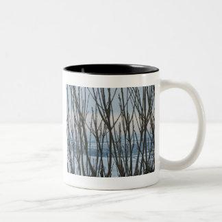 Taza de la rama del invierno