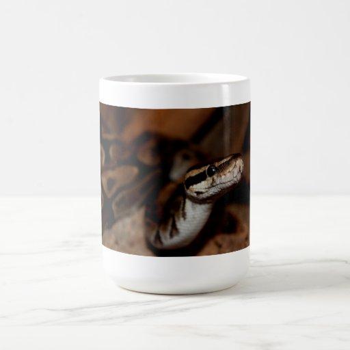 Taza de la serpiente