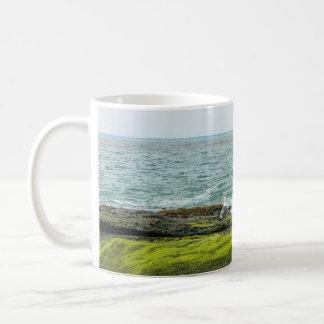 Taza de la taza del musgo de mar del océano de la