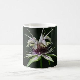Taza de la taza del Wildflower de la bergamota del