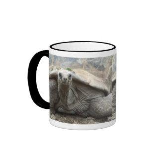 Taza de la tortuga de las Islas Galápagos