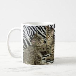 Taza de los gatitos del rescate