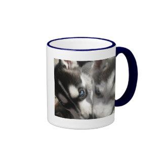 Taza de los perritos del husky siberiano