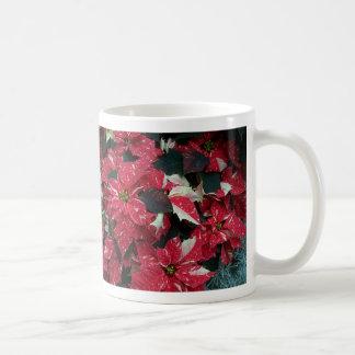 Taza de los Poinsettias