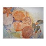 Taza de los Seashells de la orilla del jersey Postales