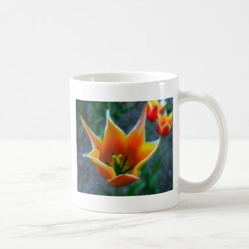 Taza de los tulipanes 4