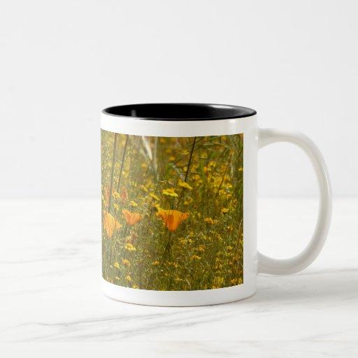 Taza de los Wildflowers