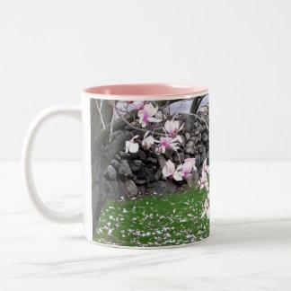 Taza de piedra de las magnolias