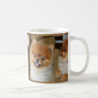 Taza de Pomeranian