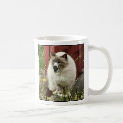 Taza de Sheepcat