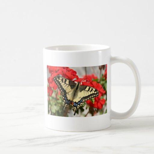 Taza de Swallowtail del anís