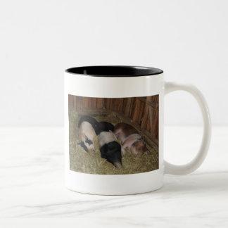 Taza de tres cerdos
