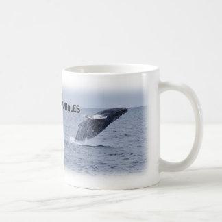Taza de violación de dos ballenas jorobadas