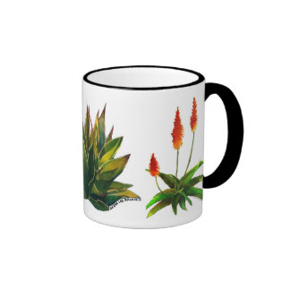 Taza del agavo y de café del áloe