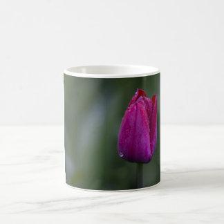 Taza del brote del tulipán
