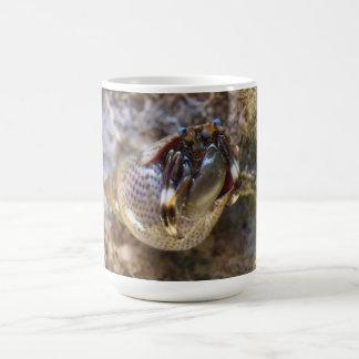 Taza del cangrejo del ermitaño de Seurat