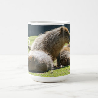 Taza del Capybara