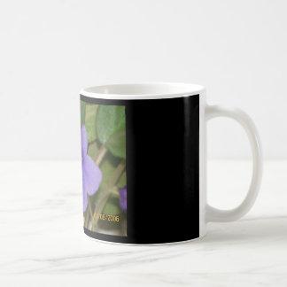 taza del coffe de la violeta africana