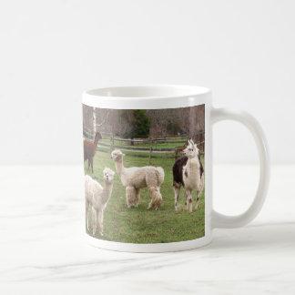 Taza del ~ de la mezcla de la alpaca