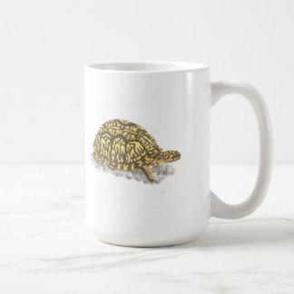 Taza del este de la tortuga de caja