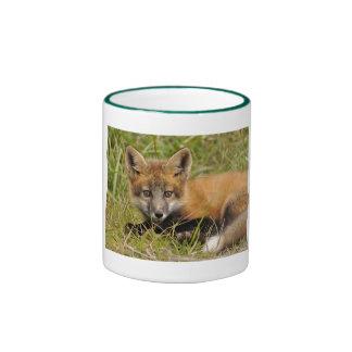 Taza del Fox rojo del bebé