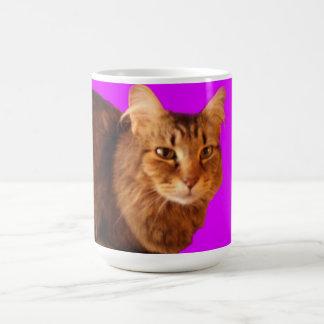 Taza del gato 14