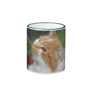 Taza del gato de la mermelada
