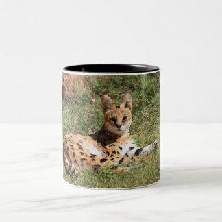 Taza del gato del Serval